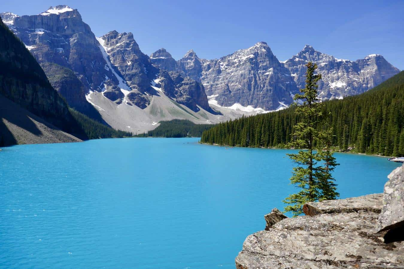 Blue lake in front of snowy mountains and pine tress