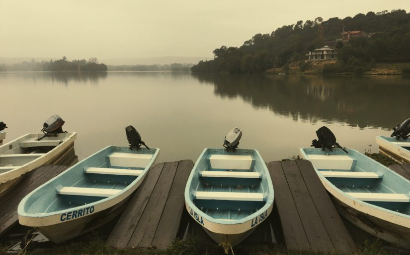 Five fishing boats with outboard motors docked on the side of a calm lake.